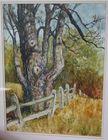 Watercolor Margaret Philbrick