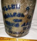 ALEXANDRIA 1/2 Gallon