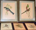 Gould prints