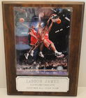 LeBron James Photo On Plaque