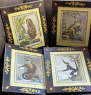Primate prints in decorated frames